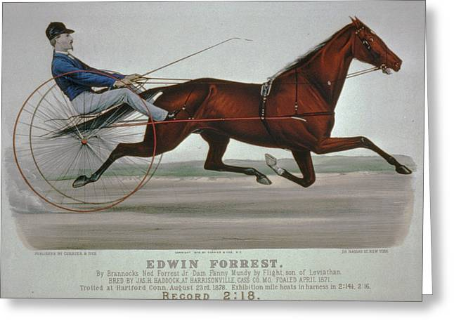Horse Whip Digital Art Greeting Cards - Edwin Forrest 1878  Poster Reproduction  Greeting Card by Lesa Fine
