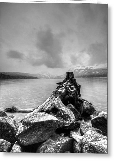 Fallen Leaf Lake Greeting Cards - Eerie Greeting Card by Michael Breshears
