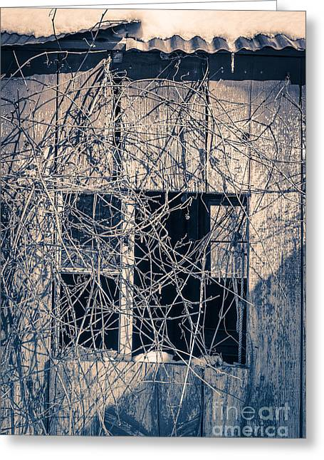Hiding Greeting Cards - Eerie Old Shack Greeting Card by Edward Fielding