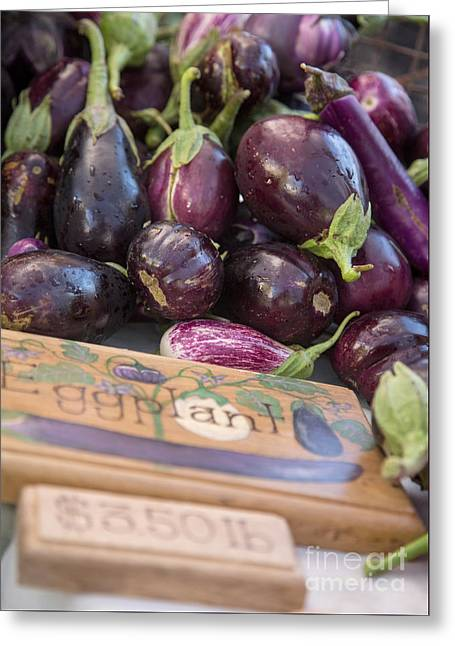 Aborigine Greeting Cards - Eggplant Greeting Card by Rebecca Cozart