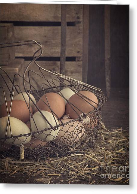 Eggs In Vintage Wire Egg Basket Greeting Card by Edward Fielding