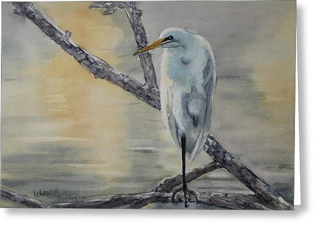 Snowy Egret Greeting Cards - Egret at Dusk Greeting Card by Patricia Pushaw