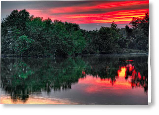Snowy Evening Greeting Cards - Egret Cove Sunset Greeting Card by William Jobes