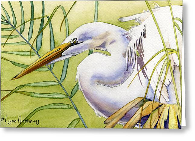 Egret Greeting Cards - Egret Greeting Card by Lyse Anthony