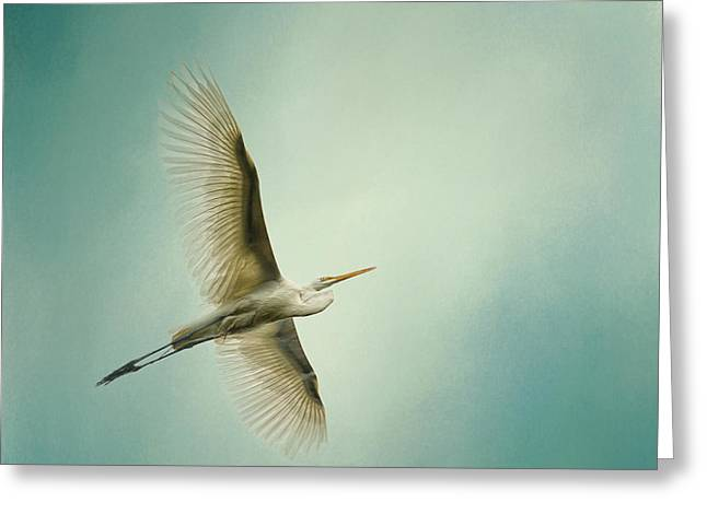 Great White Egret Greeting Cards - Egret Overhead Greeting Card by Jai Johnson