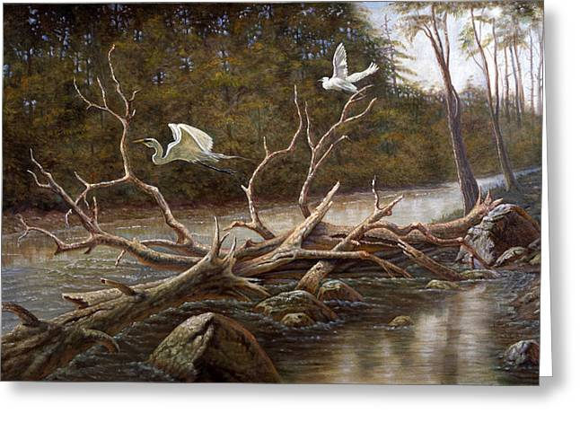 Waterscape Mixed Media Greeting Cards - Egrets Paradise Greeting Card by Gregory Perillo