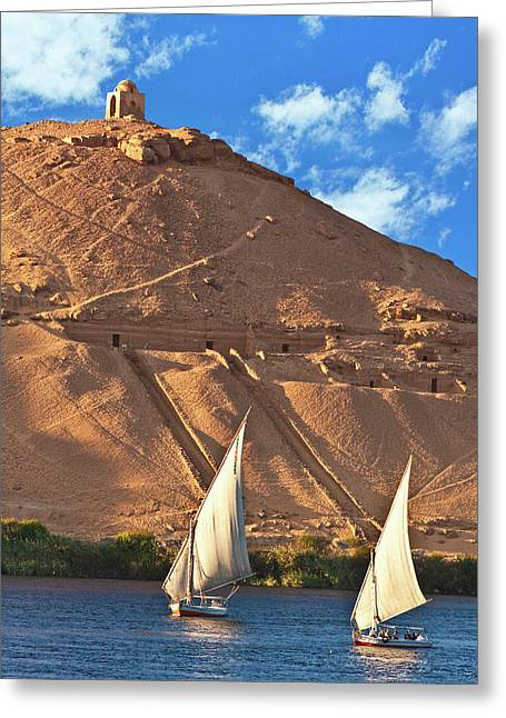 Egypt, Aswan, Nile River, Felucca Greeting Card by Miva Stock