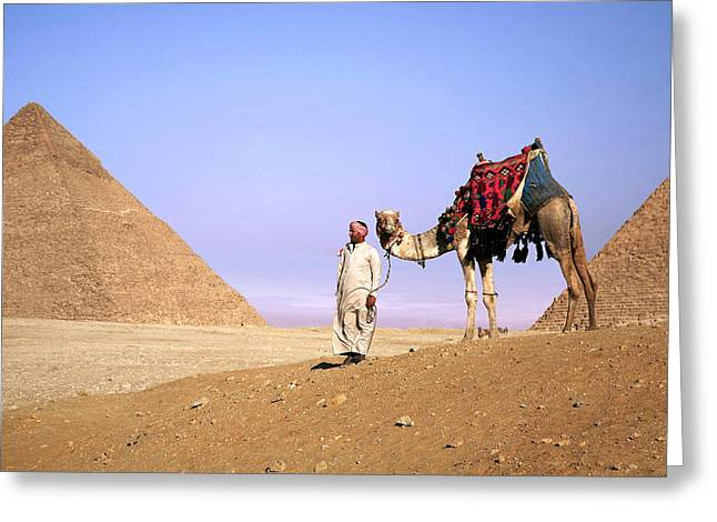 Egypt, Cairo, Giza, A Proud Egyptian Greeting Card by Miva Stock