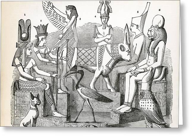 Beetle Cat Greeting Cards - Egyptian Idols  Greeting Card by Daniel Hagerman