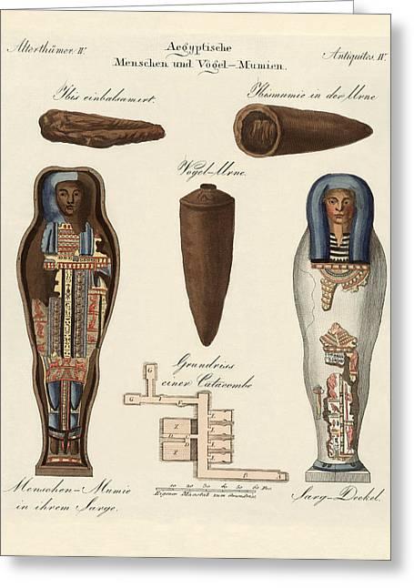 Egyptian Mummy Greeting Cards - Egyptian mummies Greeting Card by Splendid Art Prints