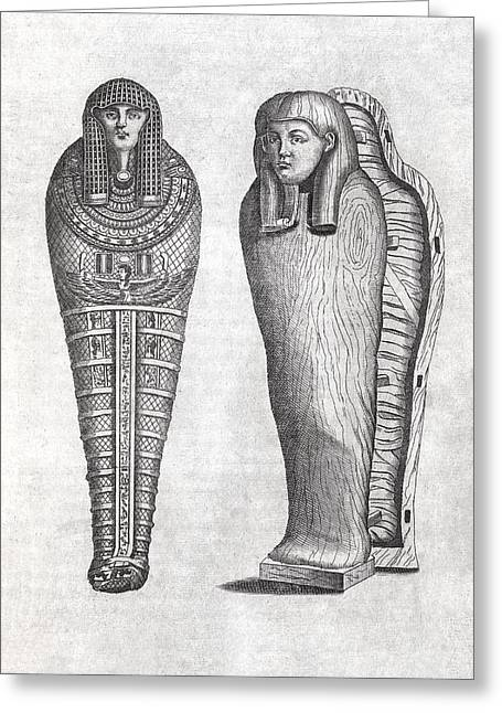 Egyptian Sarcophagus Greeting Cards - Egyptian sarcophagus, 17th century Greeting Card by Science Photo Library