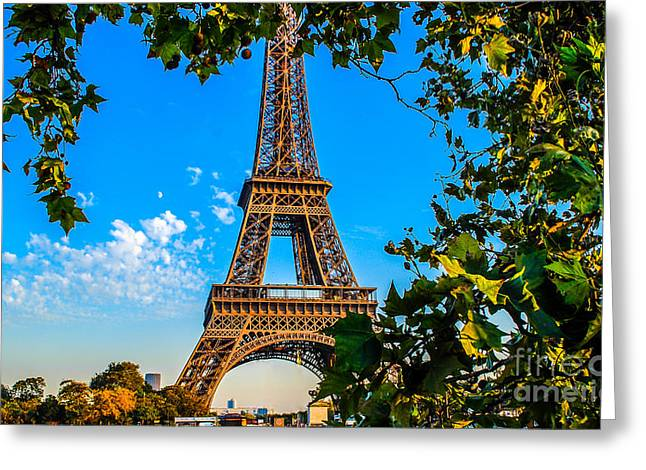 Paris Trees Nature Scenes Greeting Cards - Eiffel in green Greeting Card by Remi D Photography