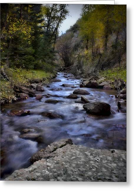 Beautiful Creek Greeting Cards - Eight Mile Creek Greeting Card by Ellen Heaverlo