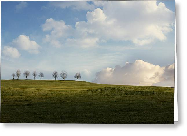 Decorate Greeting Cards - Eight Trees Greeting Card by Andrew Proudlove