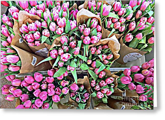Eightyeight Tulips Greeting Card by Cadence Spalding