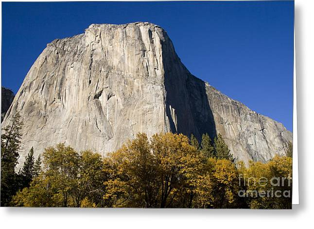 Landscape Print Greeting Cards - El Capitan in Yosemite National Park Greeting Card by David Millenheft