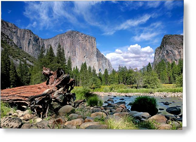 Dome Pyrography Greeting Cards - El Capitan View in Yosemite Nation Park Greeting Card by Katrina Brown