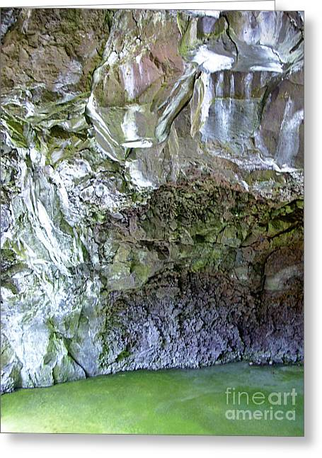 Algae Pyrography Greeting Cards - El Malpais Ice Cave 2 Greeting Card by Birgit Seeger-Brooks