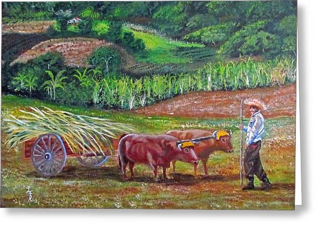 Jibaros Greeting Cards - El Paraiso Del Campesino Greeting Card by Luis F Rodriguez