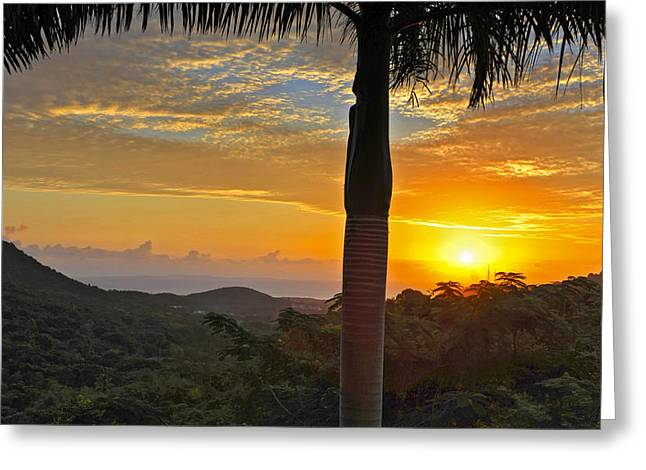 Puerto Rico Greeting Cards - El Yunque Mountain Sunrise Greeting Card by Stephen Anderson