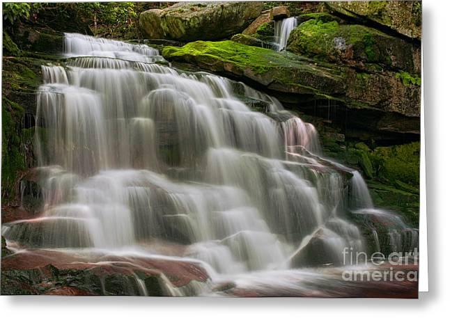 Creek Greeting Cards - Elakala Falls #2 D30010512 Greeting Card by Kevin Funk