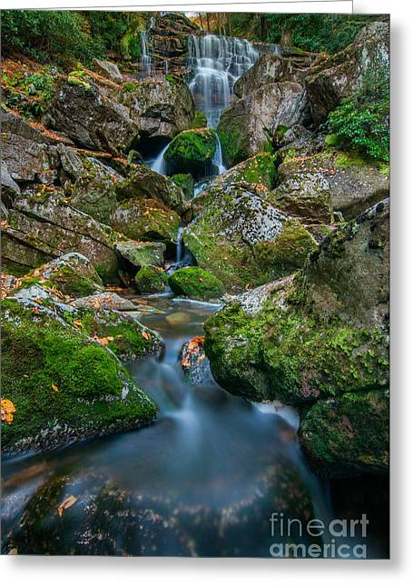 Monongahela National Forest Greeting Cards - Elakala Falls #3 D30012603 Greeting Card by Kevin Funk