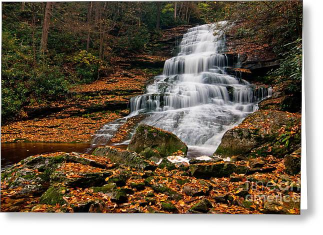 Stream Greeting Cards - Elakala Falls #4 D30016134 Greeting Card by Kevin Funk