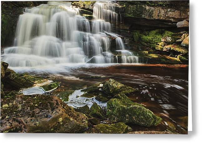 West Virginia Greeting Cards - Elakala Falls I Greeting Card by Mike Lang