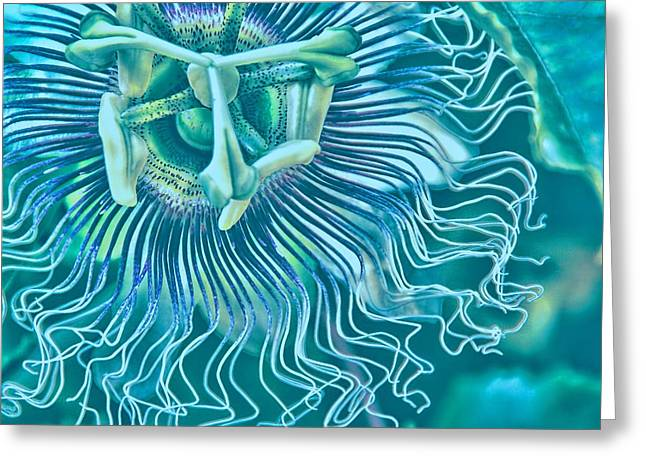 Passiflora Digital Art Greeting Cards - Electric Eye Greeting Card by Peggy J Hughes