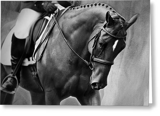 Michelle Wrighton Greeting Cards - Elegance - Dressage Horse Greeting Card by Michelle Wrighton