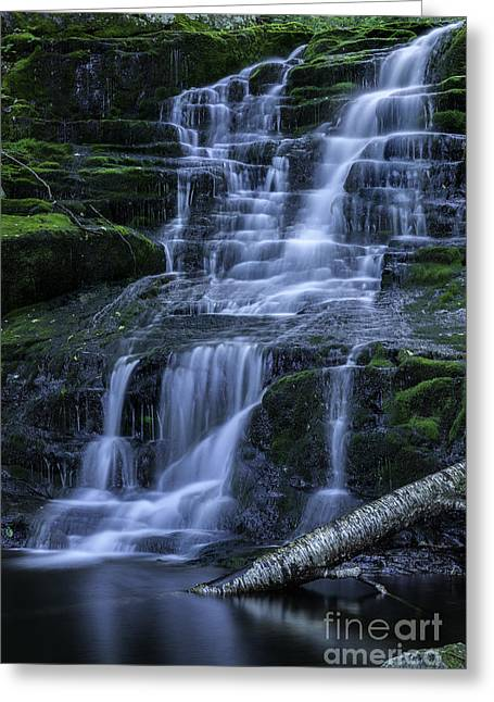 Elegant Cascades Of Falls Brook  Greeting Card by Thomas Schoeller