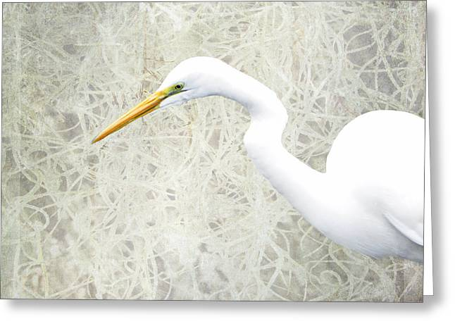 Interior Still Life Digital Greeting Cards - Great White Egret - Home Nature Decor Series Greeting Card by Ella Kaye Dickey
