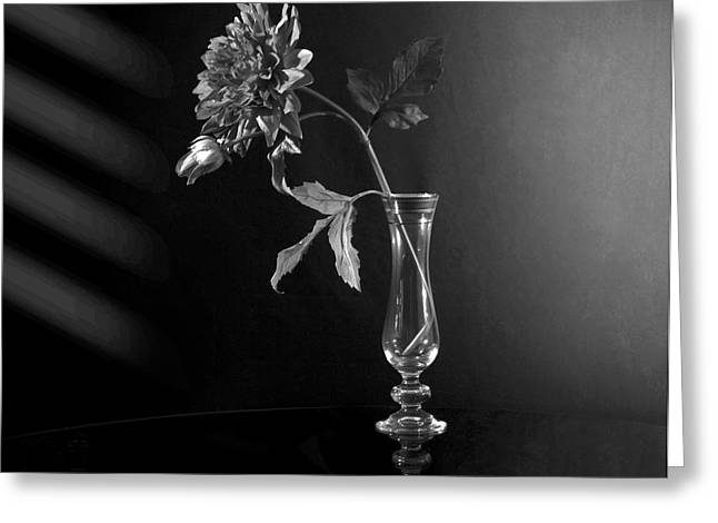 Glass Flowers And Leaves Greeting Cards - Elegant Respect  Greeting Card by Mark Ashkenazi