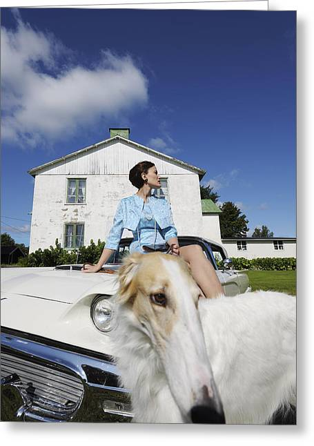 Sight Hound Greeting Cards - Elegant Woman And Borzoi Dog Greeting Card by Christian Lagereek