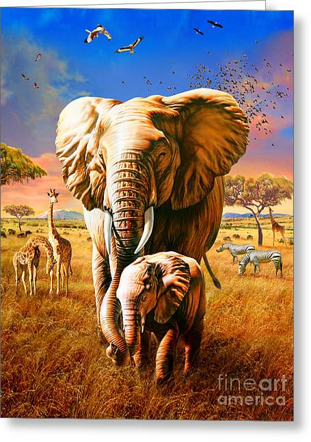 Zebra Eating Greeting Cards - Elephant Greeting Card by Adrian Chesterman