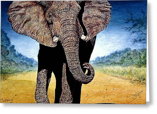 Freedom Park Paintings Greeting Cards - Elephant  Africa Greeting Card by Hartmut Jager