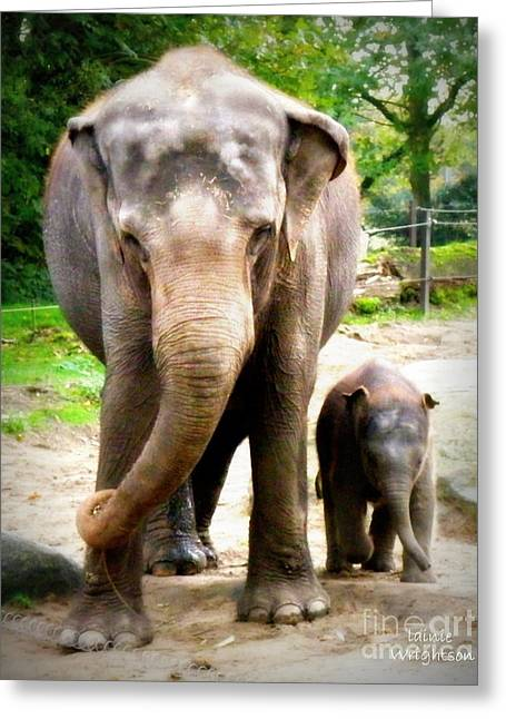 Lainie Wrightson Greeting Cards - Elephant Baby Olli with Mommy Greeting Card by Lainie Wrightson