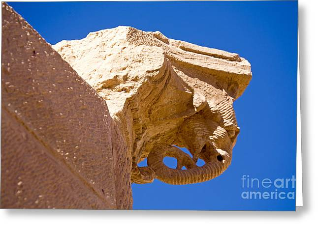 Elephant Capital, Petra, Jordan Greeting Card by Adam Sylvester