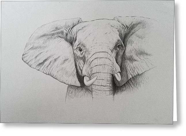 Elephant Greeting Card by Ele Grafton