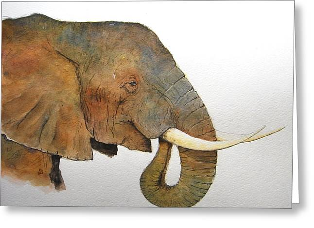 Nature Study Paintings Greeting Cards - Elephant head study Greeting Card by Juan  Bosco