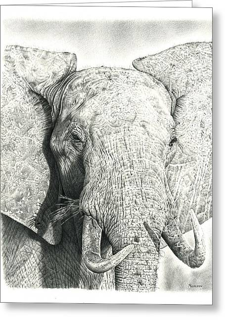 Wild Life Drawings Greeting Cards - Elephant Greeting Card by Heidi Vormer