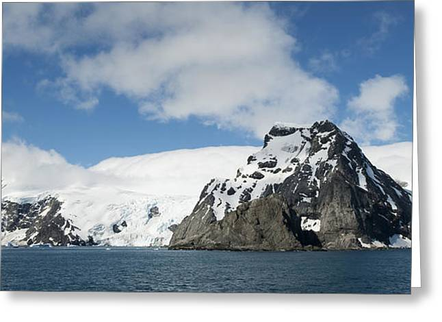 Antarctic Ocean Greeting Cards - Elephant Island, Point Wild, Antarctica Greeting Card by Steve Jones