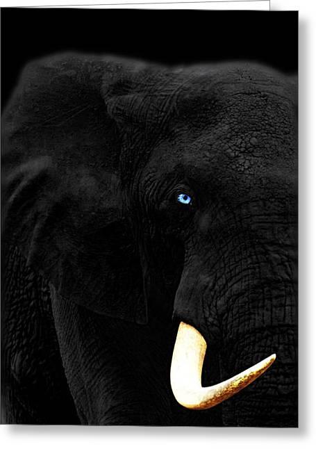 Elephants Eye Greeting Cards - Elephant Greeting Card by Jan Rafael