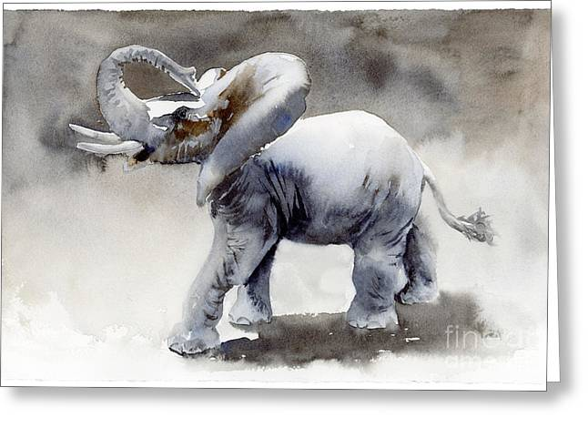 Nature Study Paintings Greeting Cards - Elephant Light Study  Greeting Card by Amy Kirkpatrick