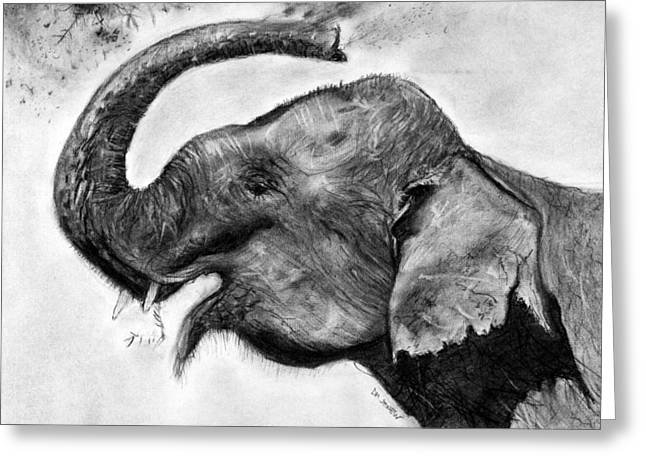 Elephant Pastels Greeting Cards - Elephant Play Greeting Card by Marie Stone Van Vuuren
