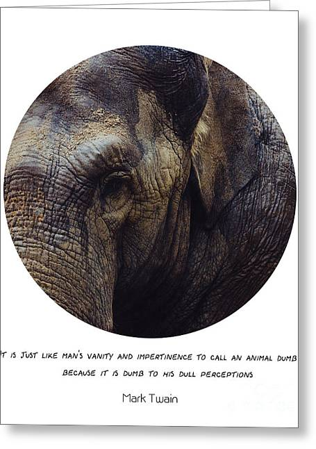Mark Twain Quote Greeting Cards - Elephant Quote Greeting Card by Pati Photography