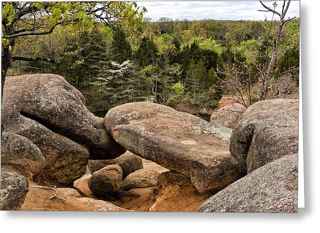 Dogwood Lake Greeting Cards - Elephant Rocks State Park DSC03768 Greeting Card by Greg Kluempers