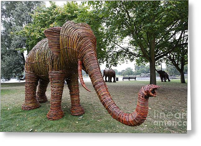 Life-size Greeting Cards - Elephant sculpture in Hyde Park London Greeting Card by Robert Preston