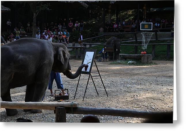 Mai Greeting Cards - Elephant Show - Maesa Elephant Camp - Chiang Mai Thailand - 011344 Greeting Card by DC Photographer
