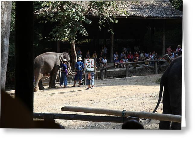 Elephant Show - Maesa Elephant Camp - Chiang Mai Thailand - 011346 Greeting Card by DC Photographer